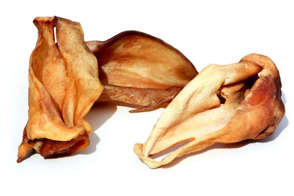 Rinder-Ohren-(honiggelb)