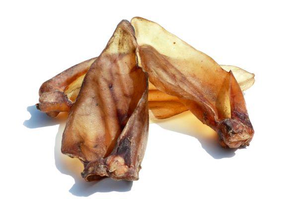 Rinder-Ohren-gross